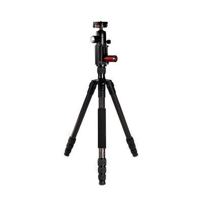 Professional Carbon Fiber video Tripod and Photography Fill Light BL254C +D3